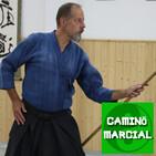 CAMINO MARCIAL nº 80 - Vicente Borondo (Shinto Muso Ryu Jojutsu)
