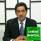 CAMINO MARCIAL nº91 - Javier Brieva (Periodismo Marcial)