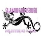 deep house vol 2 (salamandrahousemusic) by javi big