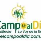 eL CaMPo aL Dia sab 28 Agosto 2020
