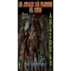 Los animales más peligrosos del mundo (7de12): Amazonas