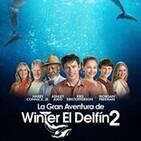 La Gran Aventura de Winter el Delfín 2 #Drama #Infantil #peliculas #audesc #podcast