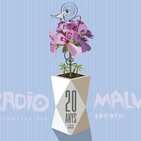 Maratón XX años Radio Malva: Amalgama Rock
