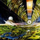 44 - Colonias espaciales - Hábitats en el espacio