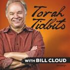 "Torah Tidbits: Ha'azinu – ""Like A Rock"""