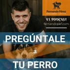 Episodio 21 - Tu perro y la soledad