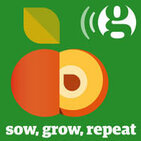 Perennial Vegetables: Sow, Grow, Repeat Winter