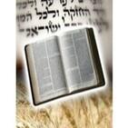 Vaigash (Y se acercó). Gen. 44.18-47.27