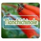 El Ángel de tu Salud -TLANCHICHINOLE