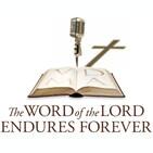 266. The Book of Matthew, Part 45 (Matthew 9:1-8) – Pr. Will Weedon, 9/22/20