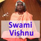 Mystische Erfahrungen mit Swami Vishnu