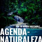 Agenda naturaleza 101. desastre ambiental en el Ártico.