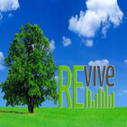 """Thrive, part 4: """"Oaks of Righteousness"""" Isaiah 61:3, Eph. 2:4-10"""