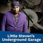 Little Steven´s Underground Garage