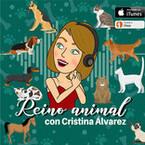 Reino Animal con Cristina Álvarez Pagán
