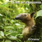 La Voz de la Amazonía