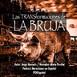 Cuento-Las-TRANSformaciones-de-LA-BRUJA / Jorge MERCADO / PONEspañol
