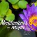 Meditación para La Abundancia y la Prosperidad por Maytte