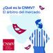 04 - ¿Qué es la CNMV? El árbitro del mercado