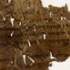 Expedición al pasado T5: Los Manuscritos del Mar Muerto