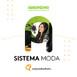 Lili Mejía - Sistema Moda
